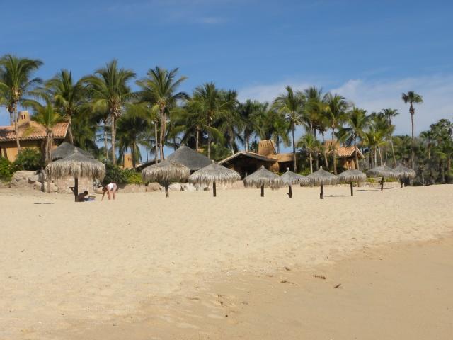 Los Cabos  Allure e Miami 1008
