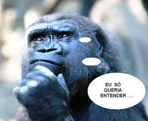 reflexao_gorila